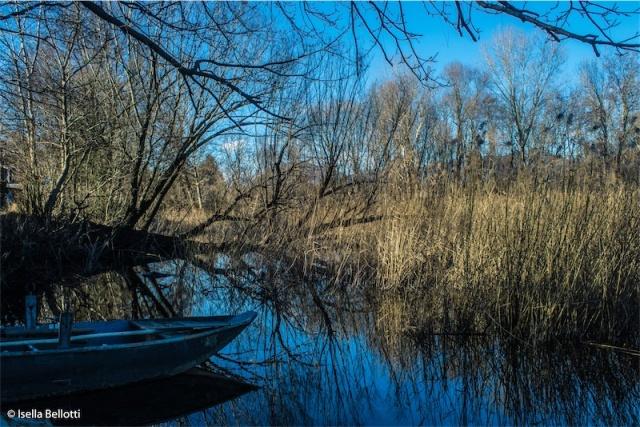 Lago Varese