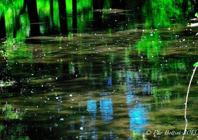 La Roggia Molinara a Lonate Pozzolo.