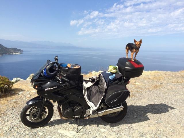 Vita di Corsica