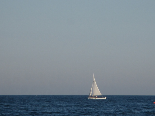 Libera nel vento e nel blu.