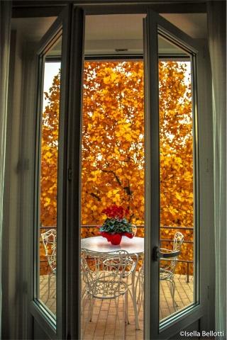 Oro alla finestra